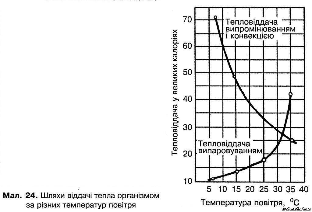 Температура, як і інші чинники навколишнього середовища